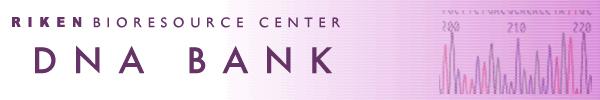 RIKEN BRC DNA BANK